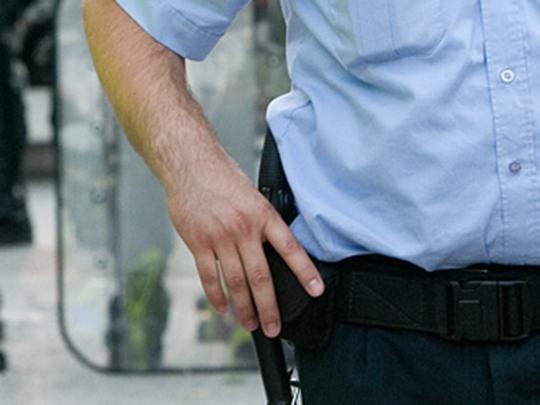 полиција-пендрак
