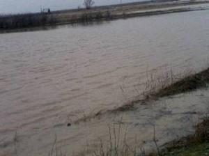 Поплава Пелагонија