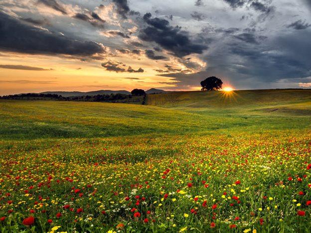 Пролет-Облаци