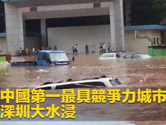 Кина поплави