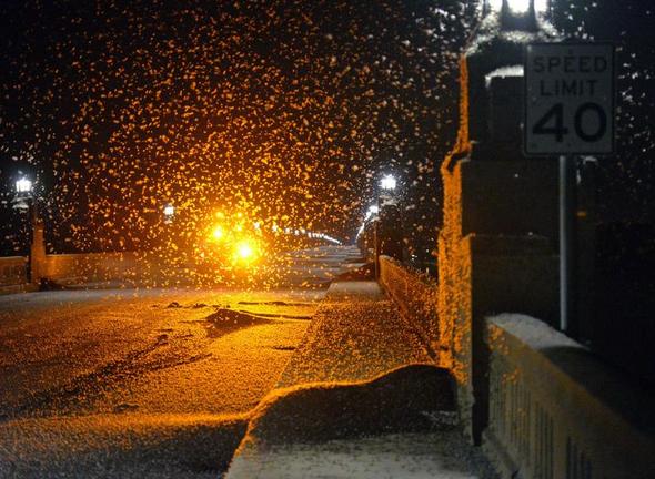 Водени мушички