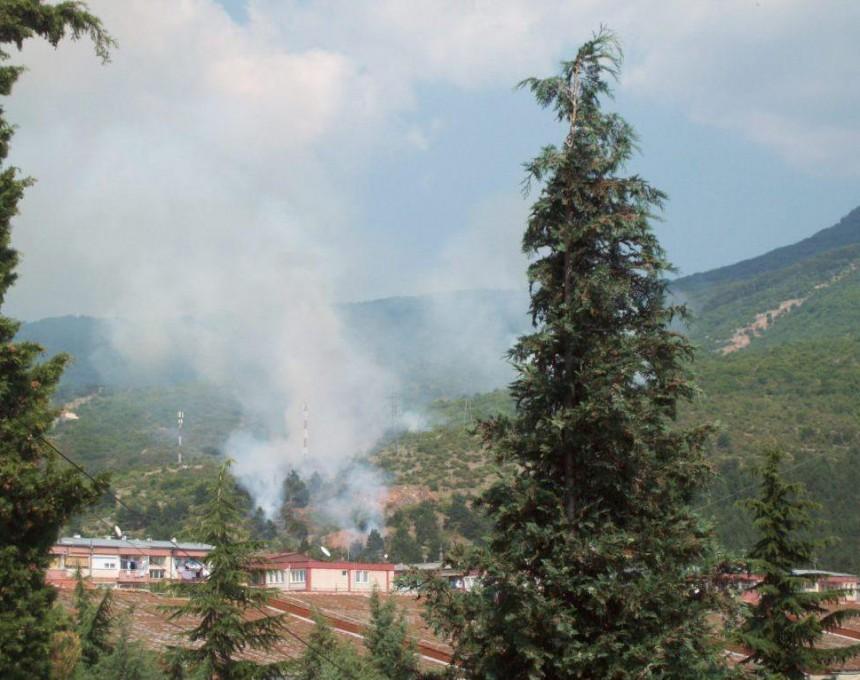 Охрид-пожар