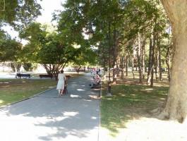 Жена парк