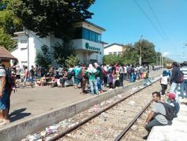 Гевгелија мигранти