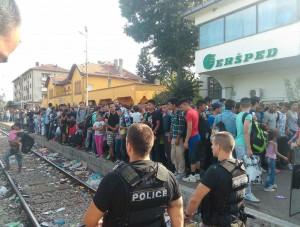 voz-migranti-воз-мигранти