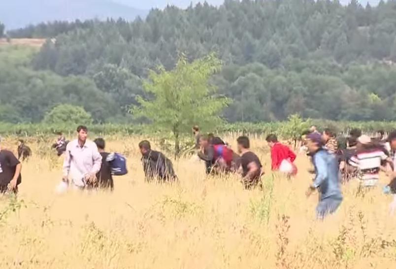 policija migranti полиција мигранти