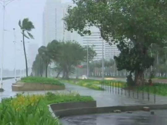 tajfun kopu