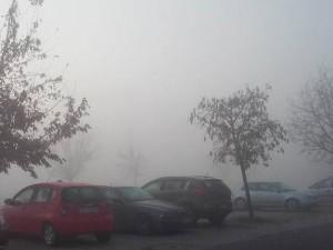 Загадување-Ново-Лисиче