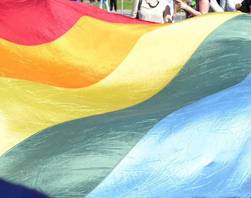 геј-виножито-знаме