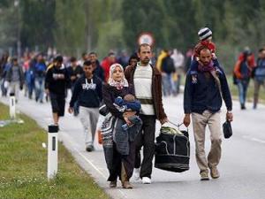 avtopat-begalci бегалци