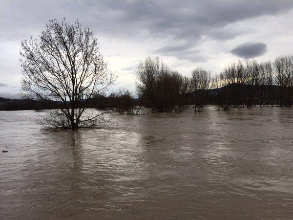 поплави-србија