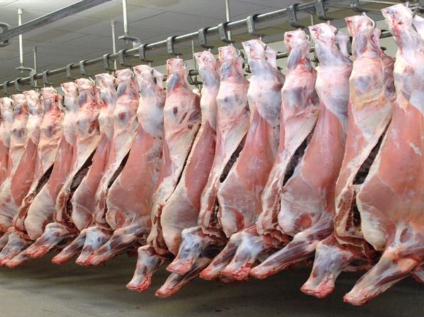 govedsko meso
