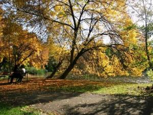esen skopje gradski park
