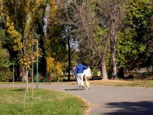 park esen lisja sonce vremenska prognoza