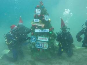 podvodna elka