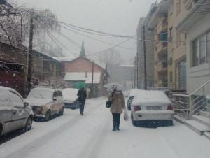 sneg (5)