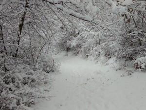sneg Vodno (4)