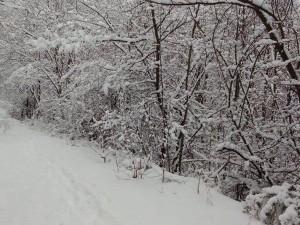 sneg Vodno (5)