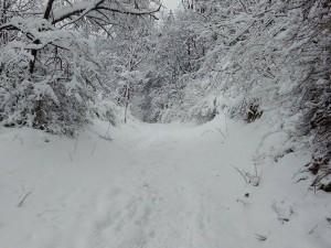 sneg Vodno (6)