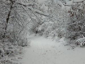 sneg Vodno (7)