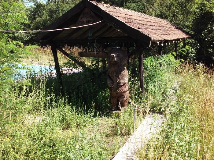 Mechka drvena skulptura nad Belovishte tetovsko jul17 - Meta