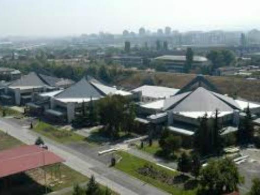 Skopski saem - TVNova