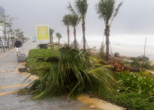 tajfun vietnam