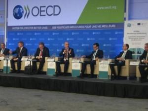 Tevdovski OECD