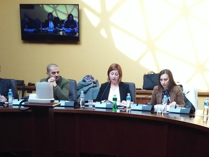 Smilka Janeska Sarkanjac sobraniska komisija 25jan18 - Meta