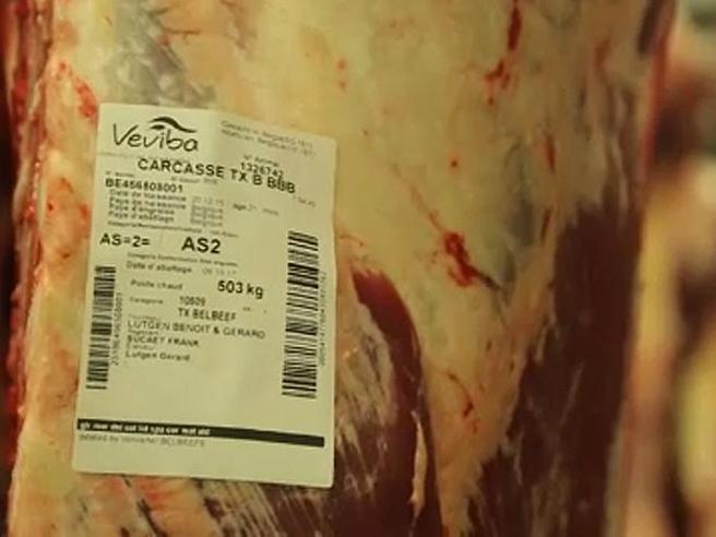 Veviba staro opasno meso Belgija mar18