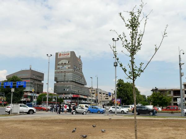 zasadeno drvo Ginko na mestoto na spomenikot na Kjoseto 10maj18 - GradSkopje