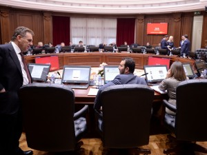 vladina sednica