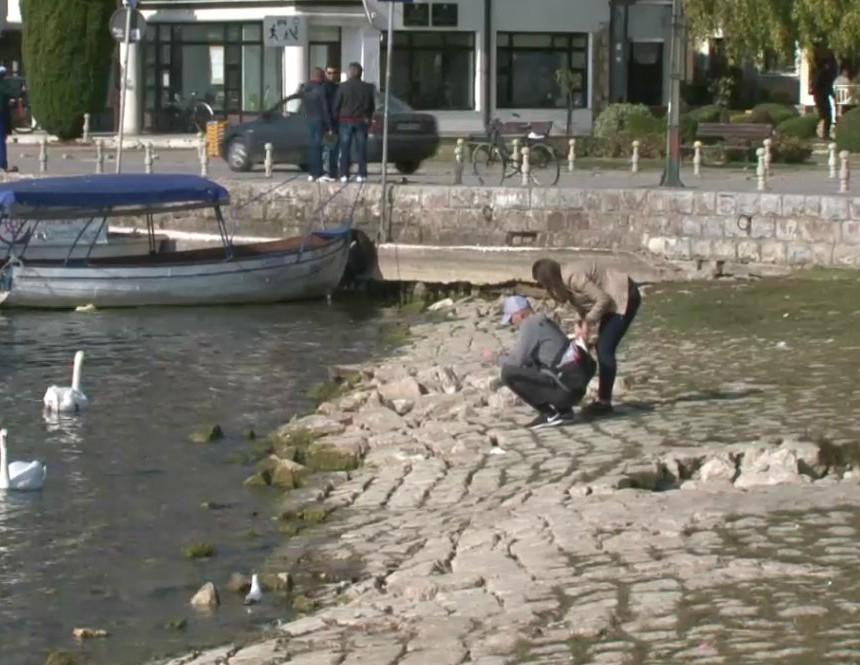 Oshteteno pristanishte 1 Ohrid 2noe18 - Meta