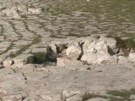 Oshteteno pristanishte 2 Ohrid 2noe18 - Meta