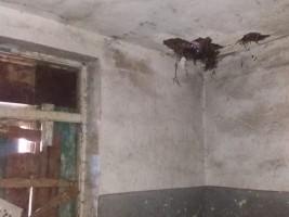 4 OU Krste Petkov Misirkov selo Lazhec jan19 - Portalb_n